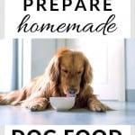homemade dog food recipe 1