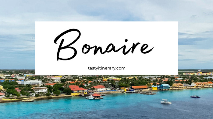 Things to do in Bonaire | blog post cover