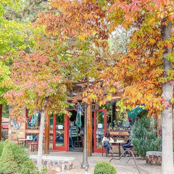 fall foliage surround store