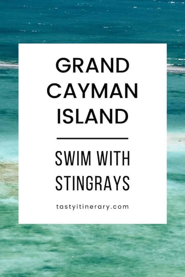 Grand Cayman Island: Swim with Stingrays