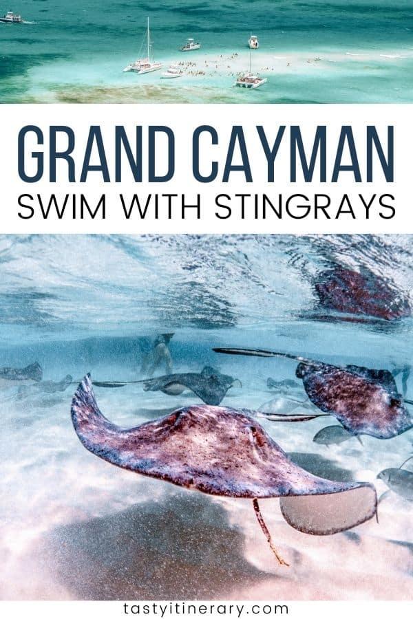 Grand Cayman Island - Swim With Stingrays