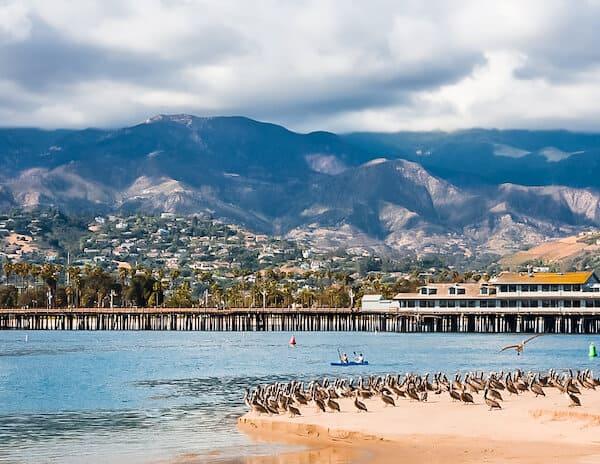 Kayakers and pelicans in Santa Barbara harbor