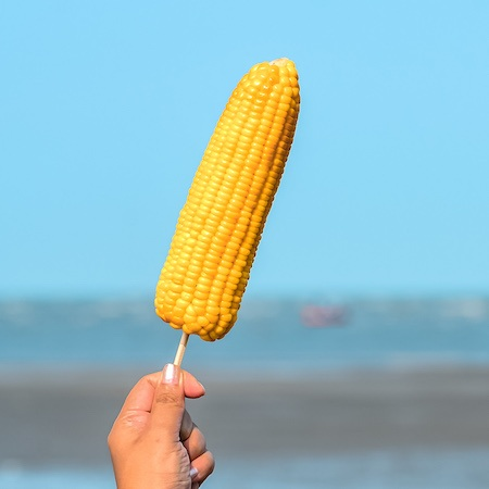 hand holding up a corn on the cob on a stick with the beach in the background